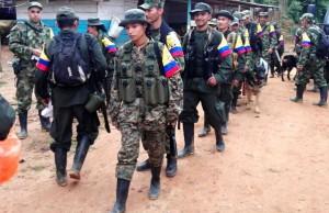Des combattants des farc se dirigeant vers les zones de rassemblement
