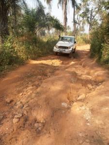Piste en Guinée forestière, saison sèche