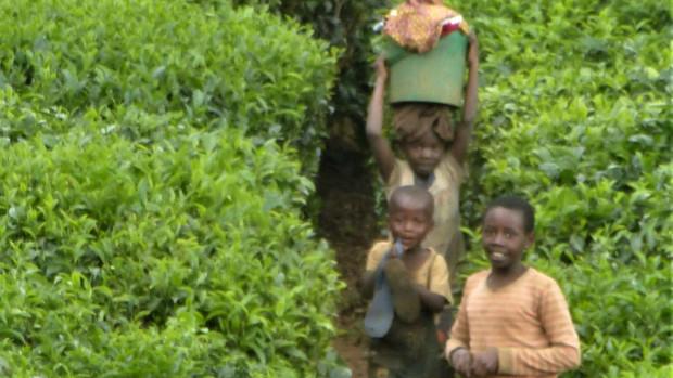 jumelage_Créteil-Butare-Cyangugu