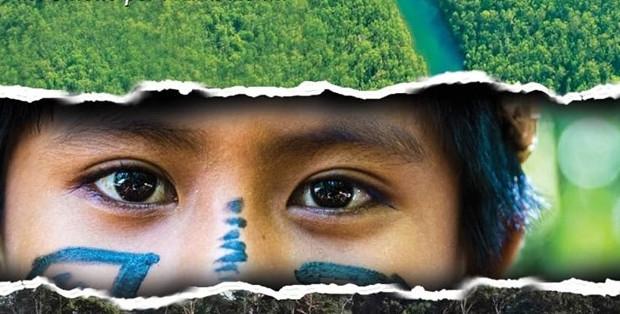 Synode_Amazonie