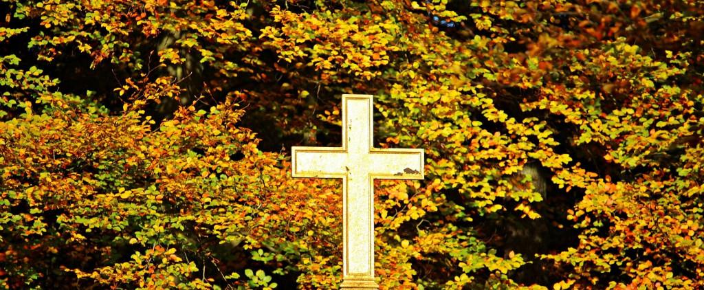 La mission ... Souvenirs d'automne !